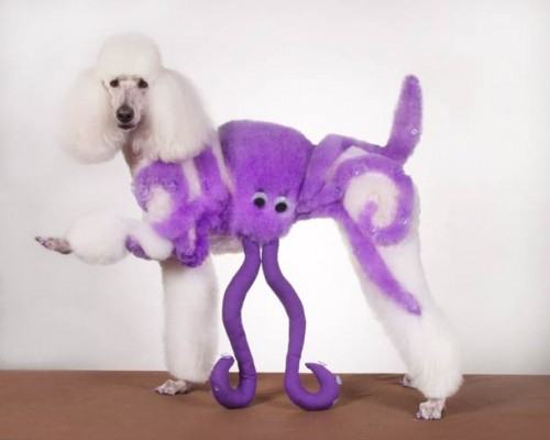 cosplay-body-painting-for-dog-14
